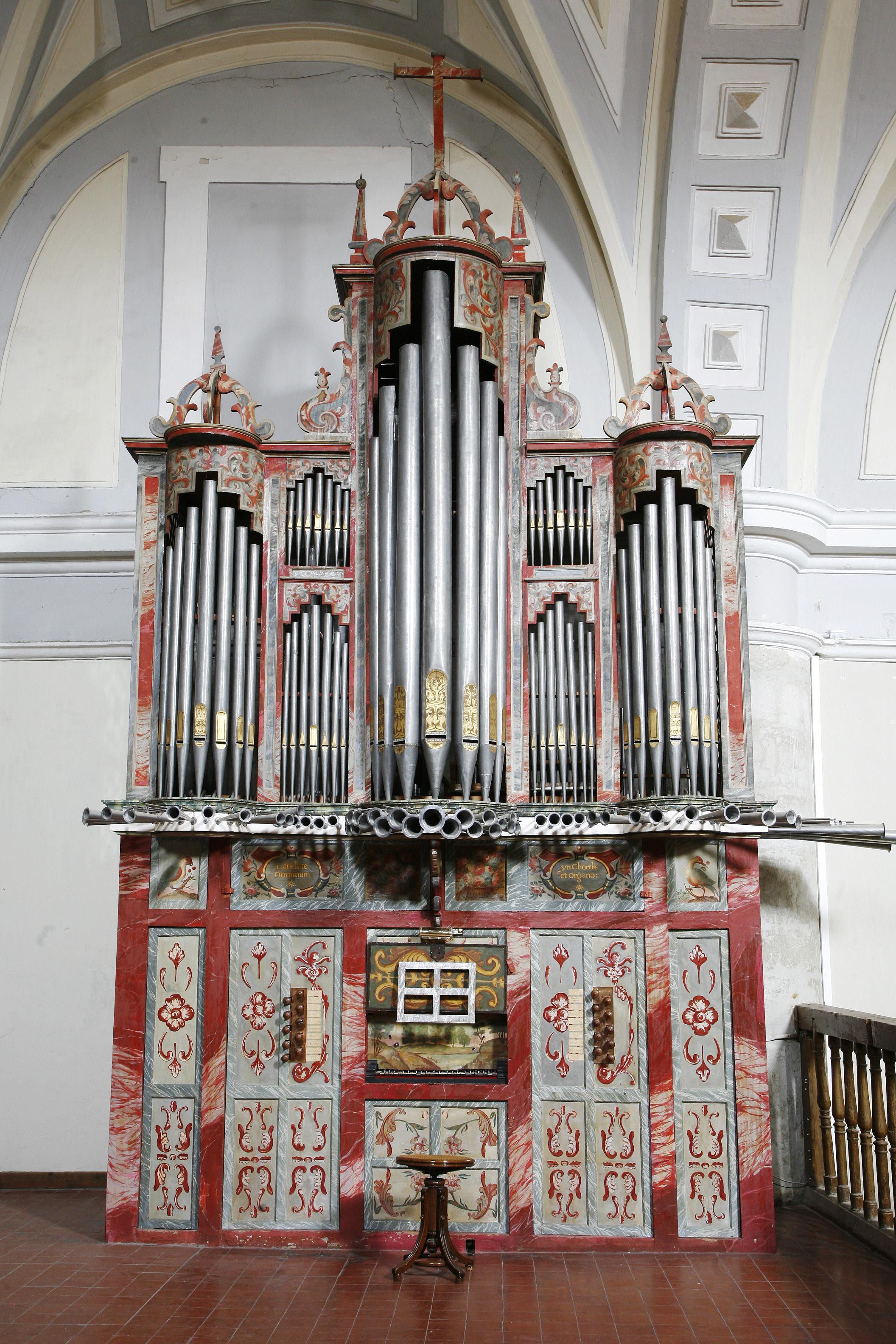 Organo1